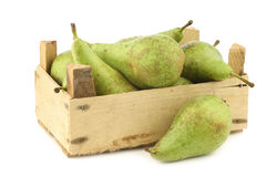 Fresh juicy conference pears in a wooden box Stock Photos