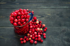 Fresh juicy cranberry in a glass transparent mug Stock Photo