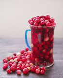 Fresh juicy cranberry in a glass transparent mug Royalty Free Stock Image