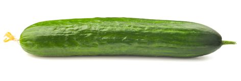 Fresh juicy cucumber on a white background. Isolated Stock Photography