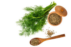Fresh Juicy Dill Isolated on White Background. Studio Photo Royalty Free Stock Photography