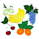 Fresh juicy fruits set Stock Photography