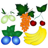 Fresh juicy fruits set Royalty Free Stock Photography