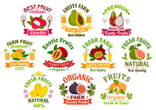 Fresh juicy fruits signs set Royalty Free Stock Images
