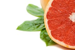 Fresh juicy grapefruits with green leafs Royalty Free Stock Photography