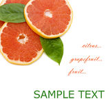 Fresh juicy grapefruits and green leafs Royalty Free Stock Image