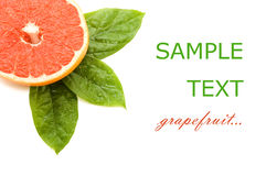 Fresh juicy grapefruits with green leafs Stock Photo