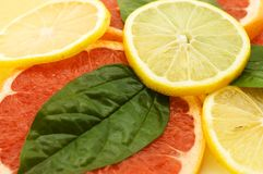 Fresh juicy grapefruits with green leafs Royalty Free Stock Image