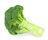 Fresh Juicy Green Broccoli Isolated. On White Background Stock Photography