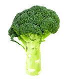 Fresh Juicy Green Broccoli Isolated. On White Background Royalty Free Stock Photography
