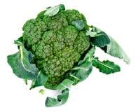 Fresh Juicy Green Broccoli on White Background. Studio Photo Royalty Free Stock Images