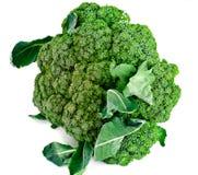 Fresh Juicy Green Broccoli on White Background. Studio Photo Stock Photography
