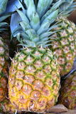 Fresh,juicy Hawaiian pineapples on display at market Stock Photography
