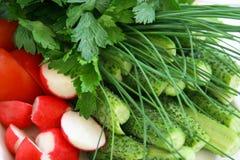 Fresh juicy healthy vegetables. Cucumber, green onions, parsley, greens, vegetables, radish Royalty Free Stock Photos