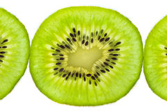 Fresh juicy kiwi fruit Royalty Free Stock Photo