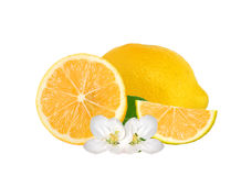 Fresh juicy lemon with green leaf and flowers isolated on white Stock Image