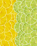 Fresh juicy lemon and lime slices as background Royalty Free Stock Image