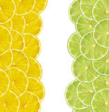 Fresh juicy lemon and lime slices on white Royalty Free Stock Photo