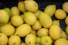 Fresh, juicy lemons. In box Stock Images