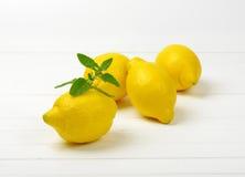 Fresh juicy lemons Stock Image