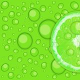Fresh juicy lime background vector illustration Royalty Free Stock Images
