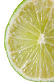 Fresh juicy lime in closeup Royalty Free Stock Photos