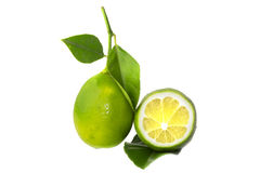 Fresh juicy lime, Royalty Free Stock Images