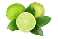 Fresh juicy limes Royalty Free Stock Image