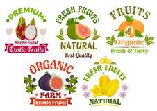 Fresh juicy natural organic fruits icons set Royalty Free Stock Photo