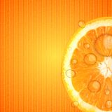 Fresh juicy orange background vector illustration Stock Photos