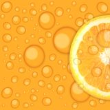 Fresh juicy orange background vector illustration Stock Image