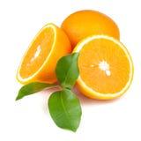 Fresh juicy oranges Stock Photography