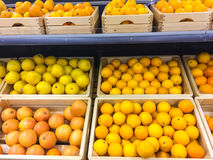 Fresh juicy oranges and grapefruits on store shelves Royalty Free Stock Photography