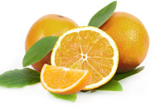 Fresh juicy oranges with leaves Stock Photography