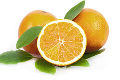 Fresh juicy oranges with leaves Royalty Free Stock Photo
