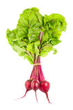 Fresh juicy organic beet with green leaves Stock Images