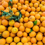 Fresh juicy organic oranges on the farmers market. Close-up orange background. Healthy vegan food
