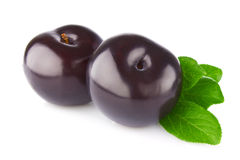Fresh juicy organic plum with green leaf Royalty Free Stock Image