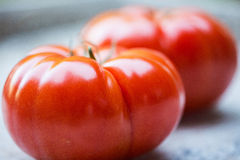 Fresh, juicy, organic red tomatoes Royalty Free Stock Photo