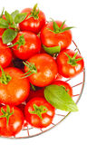 Fresh juicy organic tomatos and green leaf of basil Stock Photography