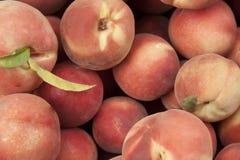 Fresh Juicy Peaches Stock Photography