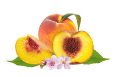 Fresh juicy peaches over green leaves with flowers isolated on w stock photography