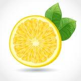 Fresh juicy piece of lemon  Stock Photos
