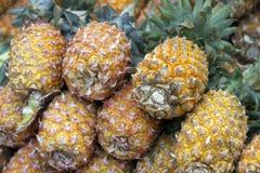 Fresh juicy pineapple on the market in India Goa Royalty Free Stock Photos
