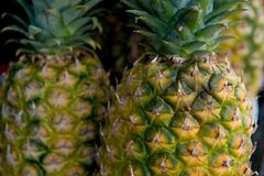 Fresh juicy pineapples Royalty Free Stock Photography
