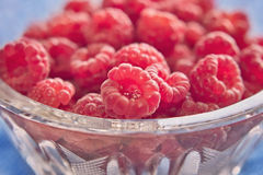 Fresh juicy raspberries in a bowl Royalty Free Stock Photography