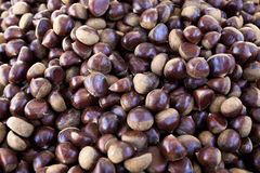 Fresh juicy raw chestnuts. Gourmet appetizer French street food. Photo for the background of a cafe, diner on wheels. Stock Images