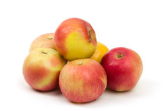 Fresh juicy red and yellow apples isolated Stock Photos
