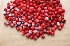 Fresh juicy ripe cranberries Royalty Free Stock Photography