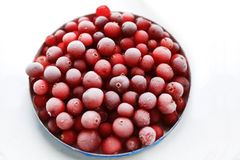 Fresh juicy ripe cranberries Royalty Free Stock Image